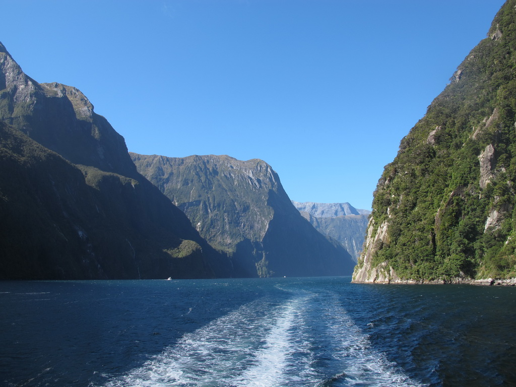 Milford sound, NZ, with a boat's wake